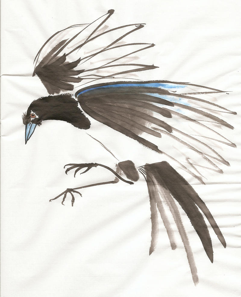 Magpie Paintings For Sale
