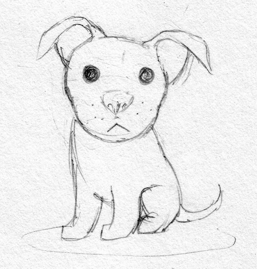how to draw a pitbull puppy cartoon