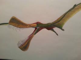 maaradactylus kellneri by spinosaurus1