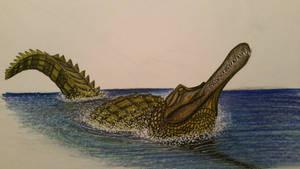 Rhamphosuchus crassidens