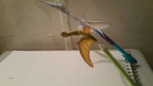 pterosaur comparison 3