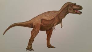 albertosaurus by spinosaurus1