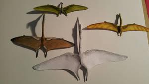 pterosaur comparison 4