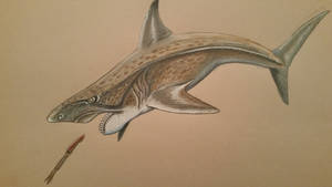 helicoprion by spinosaurus1