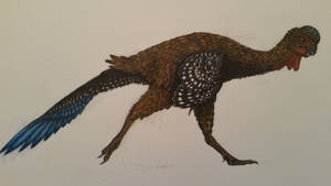 Huanansaurus ganzhouensis