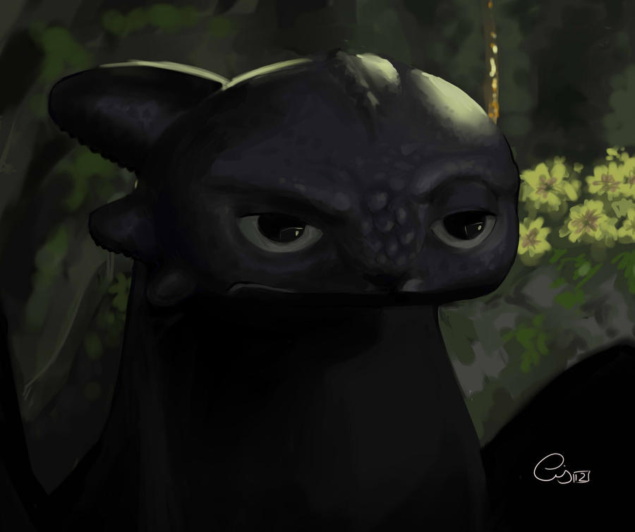 Toothless Wallpaper: Toothless (in Spanish: Desdentado) By Crissy92 On DeviantArt