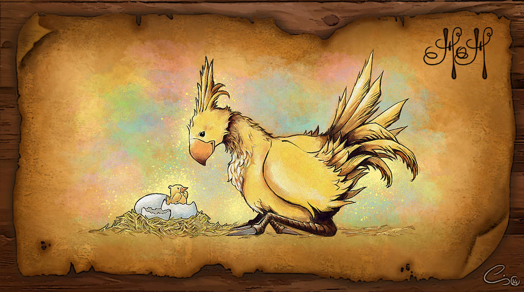 how to buy and raise a chocobo
