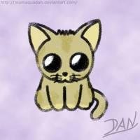 Cute animals - Neko by TeamAquaDan