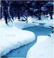 Winter by LemuriaFalls