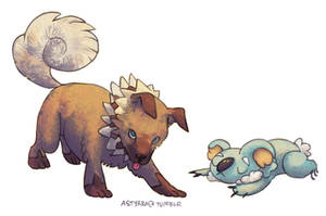 the new pokes