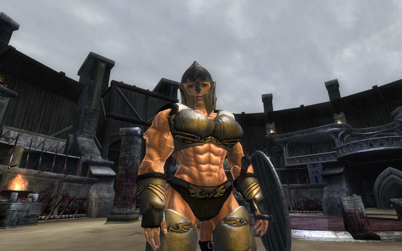 Oblivion mod by Tigersan on DeviantArt