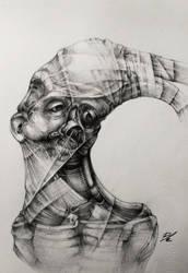 convexus by nickbleb
