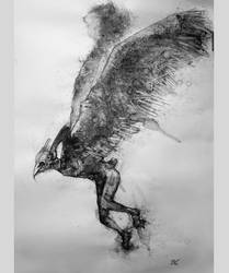 waxen wings