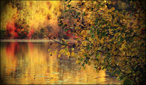 The Norman Autumn
