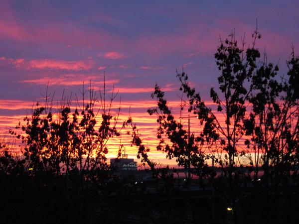 Flaming Sunrise by UrsusVanDraco