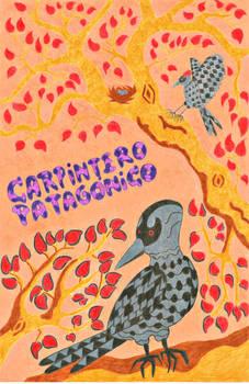 Patagonian Woodpecker