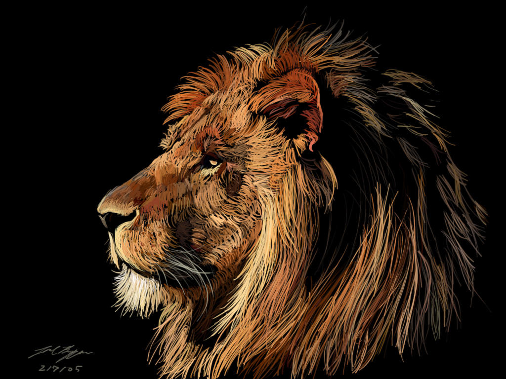 Gambar Wallpaper 3d Singa | Gambar DP BBM