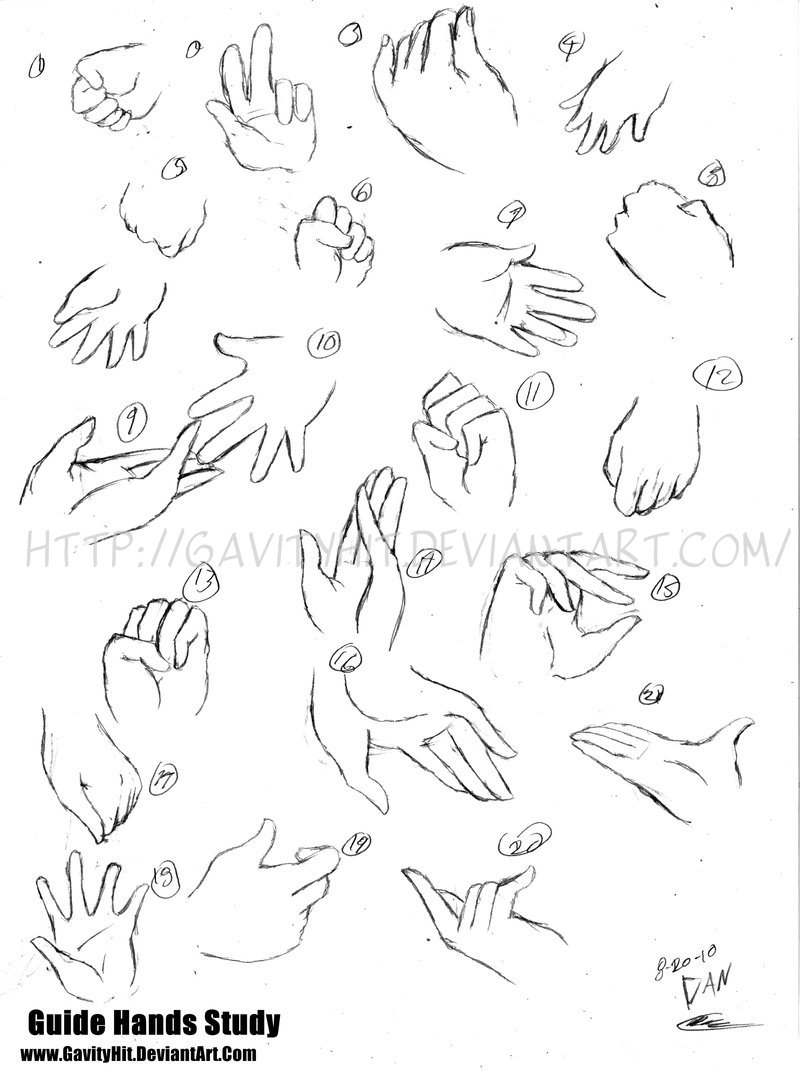 Hands Guide Study by gh07