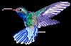 Pixel Hummingbird by Joserin