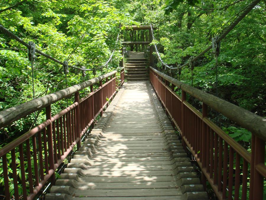 Forest Bridge By Littlelaki On Deviantart