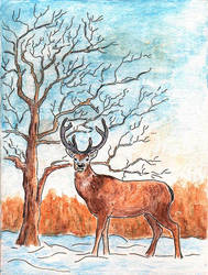Holiday Card - Winter Stag