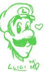 Luigi: Last Picture of 2009