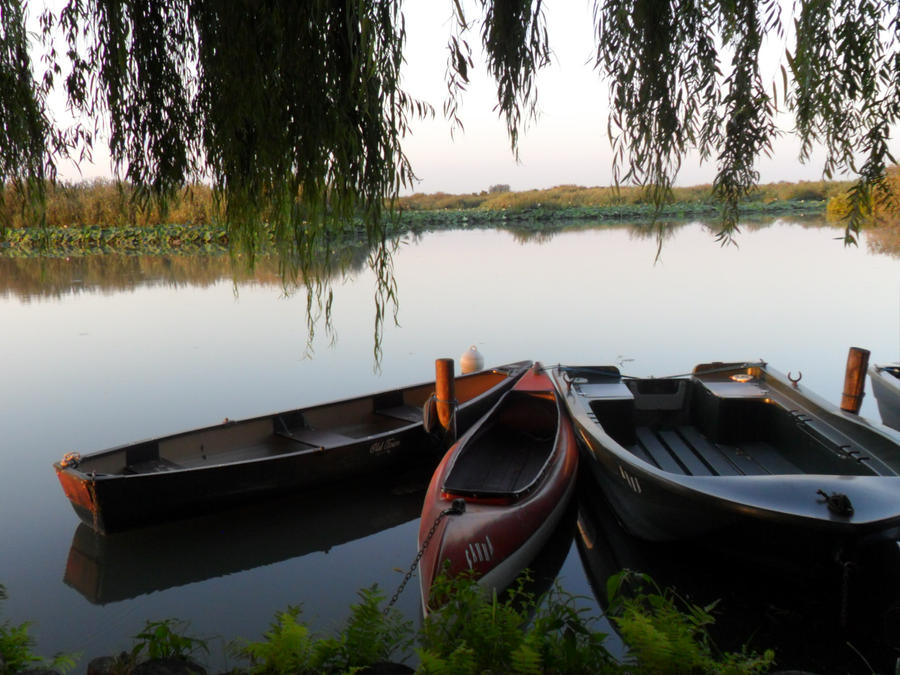 Three boats on the pond by nadineleon