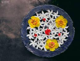 Floristry by varunabhiram