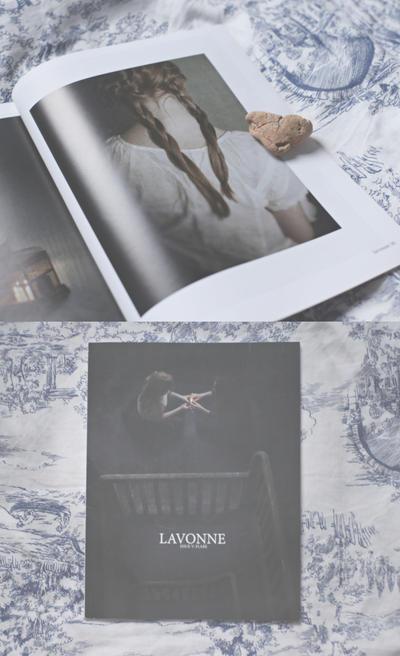 attic on birdy street serie in Lavonne Magazine by deer-o