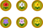 Animal Crossing New Leaf Flower Icons