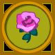 Pink Rose Circular Icon