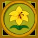 Yellow Lily Circular Icon