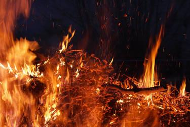 Brasas y Fuego 07