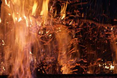Brasas y Fuego 08