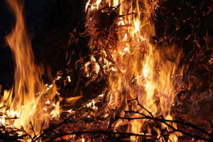Brasas y Fuego 09