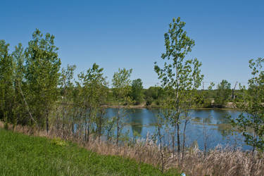Sunshine on the Pond by SarahCB1208