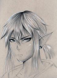 Link - Legend of Zelda for the Wii U by Kipichuu