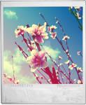 Premier sourire du printemps by etherealwinter
