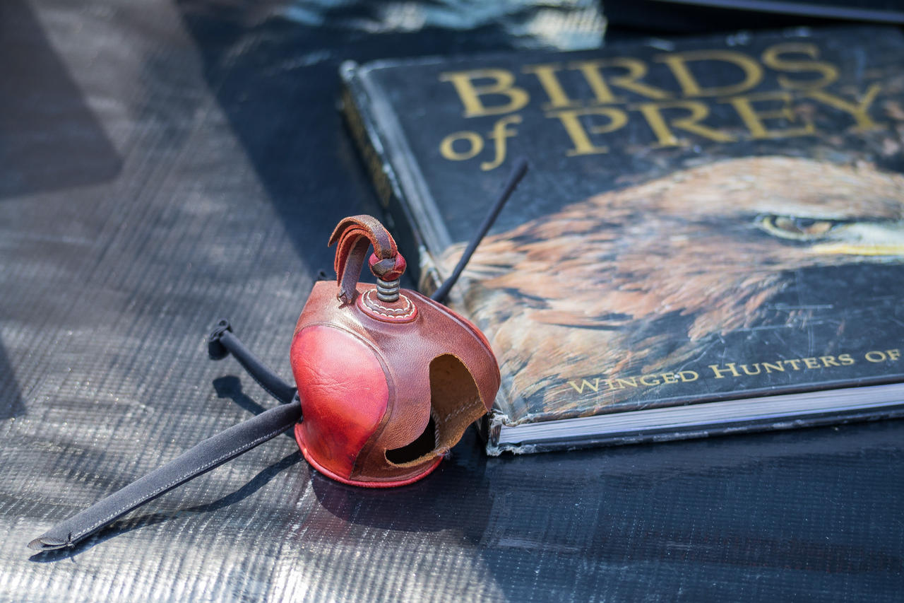 Falconry Hood and Book. by captainslack