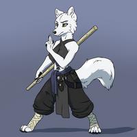 DnD Character - Tamara the monk