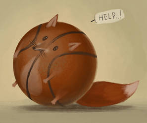 foxes don't play basketball by Insant