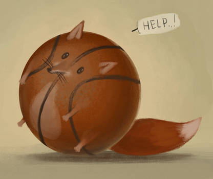 foxes don't play basketball