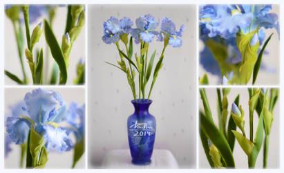 Clay irises