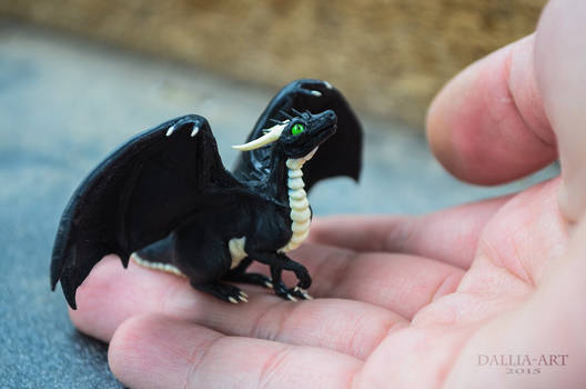 Dragon Cave - Black Dragon - Male Hatchling
