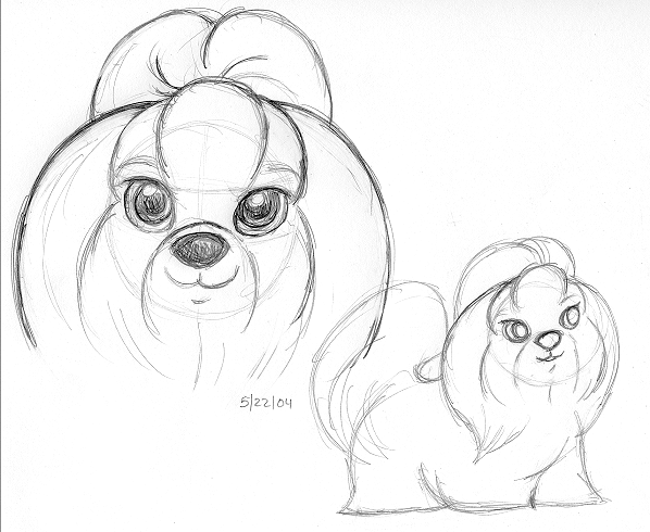 Beautiful Shih Tzu Anime Adorable Dog - shih_tzu_sketch  Best Photo Reference_68622  .png
