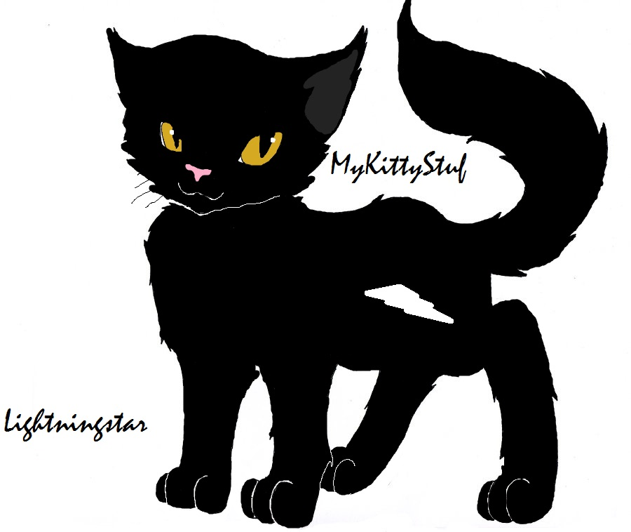 Warriors Don T Cry Summary Chapter 18: Lightningstar Leader Of Shadowclan! By MyKittyStuff On