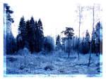 Frosty Day 5: Bluescape