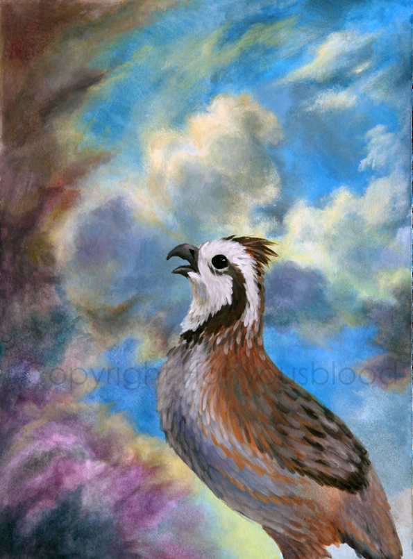 Constable's Quail by HanMonster