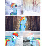rainbow dash edit