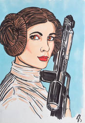 Princess Leia by seanpatrick76